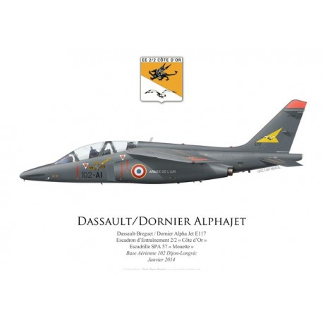 """Alpha Jet E, Escadron d'Entraînement 2/2 """"Côte d'Or"""", SPA 57 """"Mouette"""", BA 102 Dijon-Longvic, 2014"""