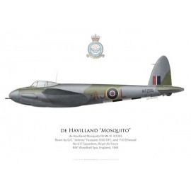 Mosquito FB Mk VI, G/C Fauquier & F/O Ellwood, No 617 Squadron, Royal Air Force, Woodhall Spa, 1944