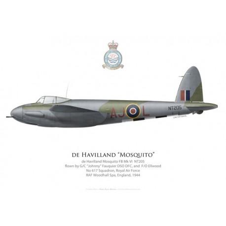 Mosquito FB Mk VI, G/C Fauquier & F/O Ellwood, No 617 Squadron, Royal Air Force, Woodhall Spa, 1944