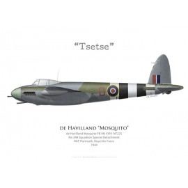 "Mosquito FB Mk XVIII ""Tsetse"", No 248 Squadron, Royal Air Force, 1944"