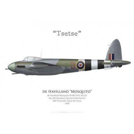 """Mosquito FB Mk XVIII """"Tsetse"""", No 248 Squadron, Royal Air Force, 1944"""