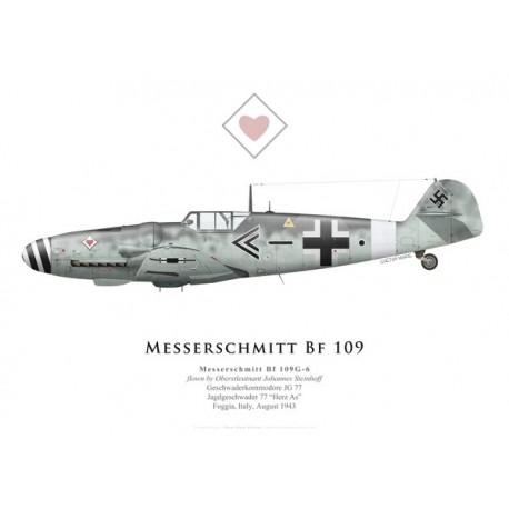 Messerschmitt Bf 109G-6, Obstlt. Johannes Steinhoff, Geschwaderkommodore JG 77