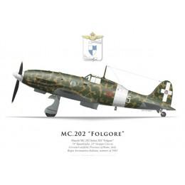 MC.202 Folgore Series XII, 74a Squadriglia, 23° Gruppo de Caccia, Cerveteri, été 1943