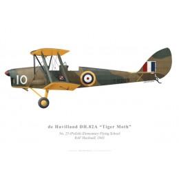 Tiger Moth, No 25 (Polish) Elementary Flying School