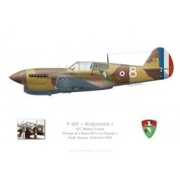 "P-40F Warhawk, Groupe de Chasse II/5 ""La Fayette"", Tunisie, 1943"