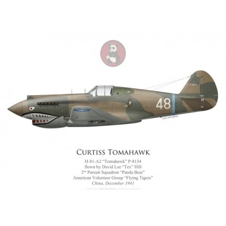 """H-81 Tomahawk, """"Tex"""" Hill, 2nd PS, American Volunteer Group """"Flying Tigers"""", December 1941"""