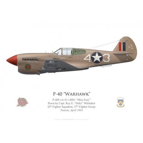"""P-40F Warhawk """"Miss Fury"""", Capt. Roy Whittaker, 65th FS, 57th FG, Tunisie, 1943"""