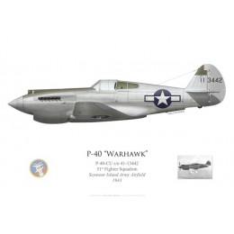 P-40-CU Warhawk, 51st FS, Seymour Island Army Airfield, 1943