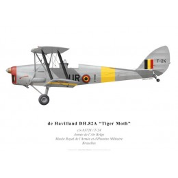 Tiger Moth, Belgian Air Force