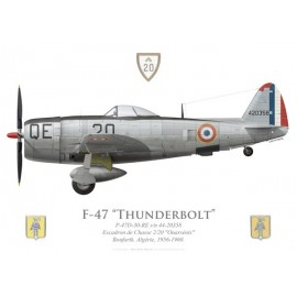 """F-47D Thunderbolt, EC 2/20 """"Ouarsénis"""", Algérie, 1956-1960"""