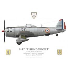 """F-47D Thunderbolt, EC 2/20 """"Ouarsénis"""", French Air Force, Algeria, 1956-1960"""