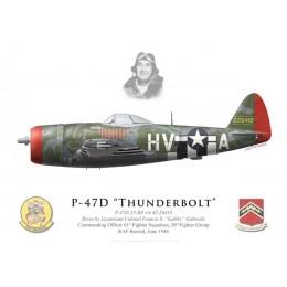"""P-47D Thunderbolt, Lt. Col. """"Gabby"""" Gabreski, 61st FS, 56th FG, June 1944"""