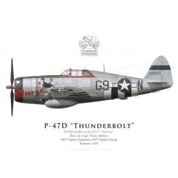"P-47D Thunderbolt ""Fat Cat"", Capt. Henry Bakken, 509th FS, 405th FG, 1944"