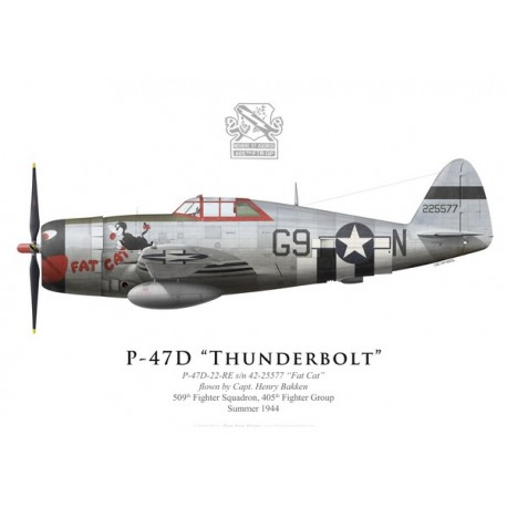 "P-47D Thunderbolt ""Fat Cat"", Capt. Henry Bakken, 509th FS, 405th FG, 1944"