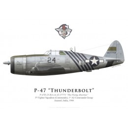 "P-47D Thunderbolt ""The Flying Abortion"", 5th FS (Commando), 1st ACG, Inde, 1944"