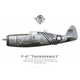 "P-47D Thunderbolt ""The Flying Abortion"", 5th FS (Commando), 1st ACG, India, 1944"