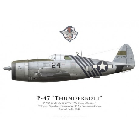 """P-47D Thunderbolt """"The Flying Abortion"""", 5th FS (Commando), 1st ACG, Inde, 1944"""