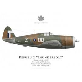 Thunderbolt Mk I, F/S John Cross, No 5 Squadron, Inde, 1945