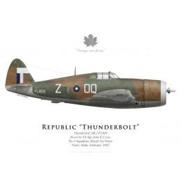 Thunderbolt Mk I, F/S John Cross, No 5 Squadron, India, 1945