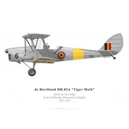 Tiger Moth, Belgian Air Force