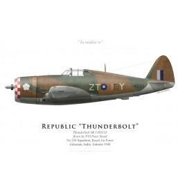 Thunderbolt Mk I, P/O Peter Stead, No 258 Squadron, Royal Air Force, India, Autumn 1944
