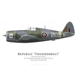 Thunderbolt Mk I, No 73 Operational Training Unit, Egypt, Autumn 1944