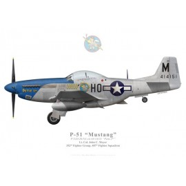 "P-51D Mustang ""Petie 2nd"", John C. Meyer, 487th FS, 352nd FG"