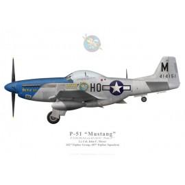 "P-51D Mustang ""Petie 2nd"", John C. Meyer, 487th FS, 352nd FG"