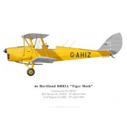 Tiger Moth G-AHIZ