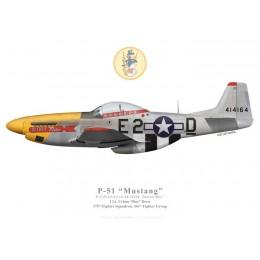 "P-51D Mustang ""Detroit Miss"", 2Lt. Urban Drew, 375th FS, 361st FG, 1944"