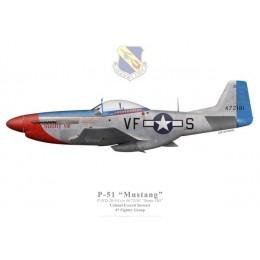 "P-51D Mustang ""Sunny VIII"", Col. Everett Stewart, 4th FG, 1945"