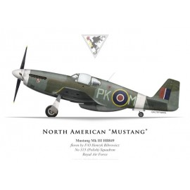 Mustang Mk III, F/O H. Bibrowicz, No 315 (Polish) Squadron, Royal Air Force