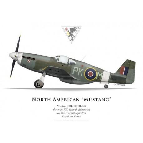 Mustang Mk III, F/O H. Bibrowicz, No 315 (Polish) Squadron, Royal Air Force