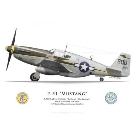 "P-51C (F-6C) Mustang ""Barbara's/Miss Revenge"", Lt.Col. Edward O. McComas, 118th Tactical Reconnaissance Squadron"
