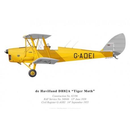 Tiger Moth G-AOEI (modifié)