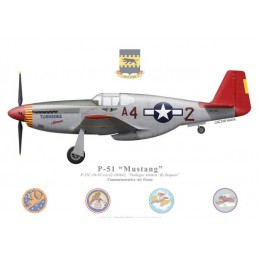 "P-51C Mustang ""Tuskegee Airmen / By Request"", NL61429, Commemorative Air Force"