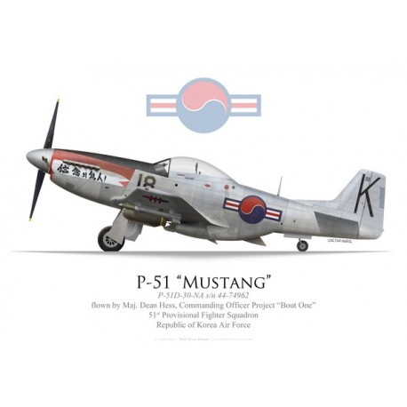 """P-51D Mustang, Maj. Dean Hess, Project """"Bout One"""", 51st Provisional Fighter Squadron, RoKAF, 1950"""