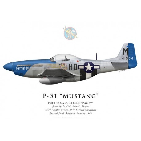 "P-51D Mustang ""Petie 3rd"", Lt. Col. John C. Meyer, 487th Fighter Squadron, 352nd Fighter Group, Belgique, janvier 1945"