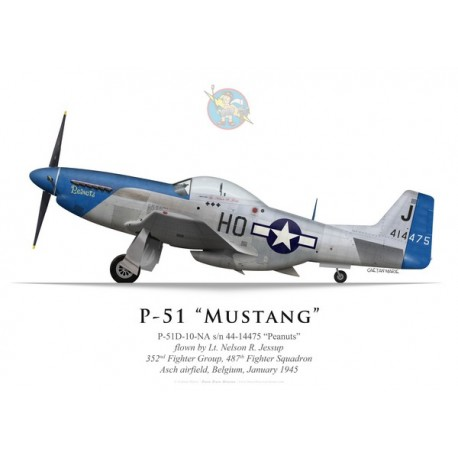 """P-51D Mustang """"Peanuts"""", Lt. Nelson Jessup, 487th Fighter Squadron, 352nd Fighter Group, Belgium, 1945"""