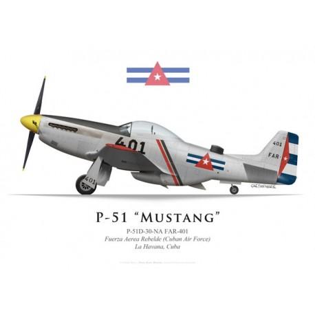 "P-51D Mustang ""FAR-401"", Fuerza Aerea Rebelde, La Havana, Cuba"