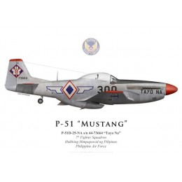 "P-51D Mustang ""Tayo Na"", 7th Fighter Squadron, Philippine Air Force"