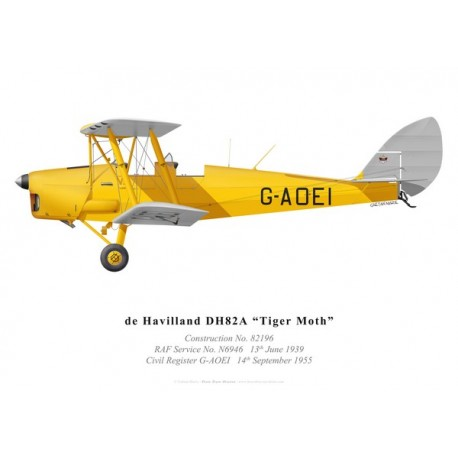 Tiger Moth G-AOEI