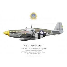 "P-51B Mustang ""Bald Eagle III"", Lt Robert Eckfeld, 374th Fighter Squadron, 361st Fighter Group, 1944"