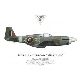 "Mustang Mk III, W/O Ryszard Idrian, No 315 ""City of Deblin"" (Polish) Squadron, Royal Air Force, 1944"