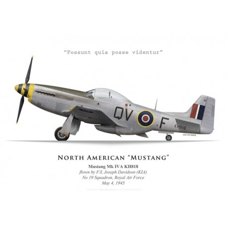 Mustang Mk IVA, F/L Joseph Davidson, No 19 Squadron, Royal Air Force, May 1945