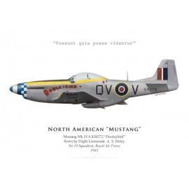 "Mustang Mk IVA ""Dooleybird"", F/L A. S. Doley, No 19 Squadron, Royal Air Force, 1945"