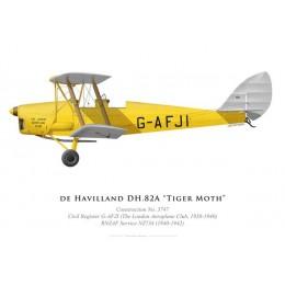 Tiger Moth G-AFJI