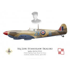Spitfire Mk IXc, S/L Stanislaw Skalski, Polish Fighting Team, Royal Air Force, Tunisia, 1943