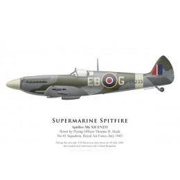 Spitfire Mk XII, F/O Thomas Slack, No 41 Squadron, Royal Air Force, July 1943