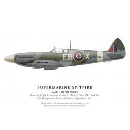 "Spitfire Mk XII, F/L Arthur ""Pinky"" Glen, No 41 Squadron, Royal Air Force, September 1943"